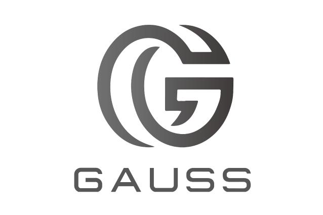 ロゴ:株式会社 GAUSS