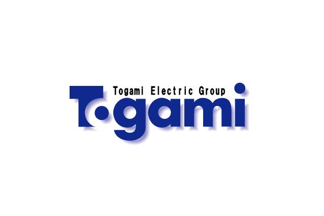 ロゴ:株式会社戸上電機ソフト