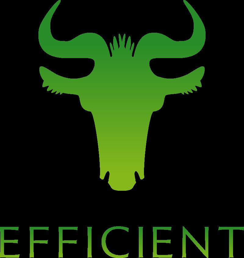 ロゴ:株式会社エフィシエント